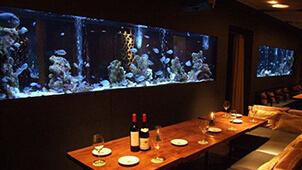 アクアリウムのあるバー&レストラン〜まるで水族館のような素敵な空間演出!