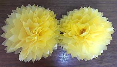 Flowerpom 11