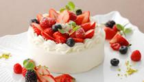 誕生日ケーキ付きディナー