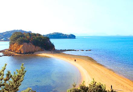 鹿児岛県/奄美大岛  还是位于九州的世界遗产屋九