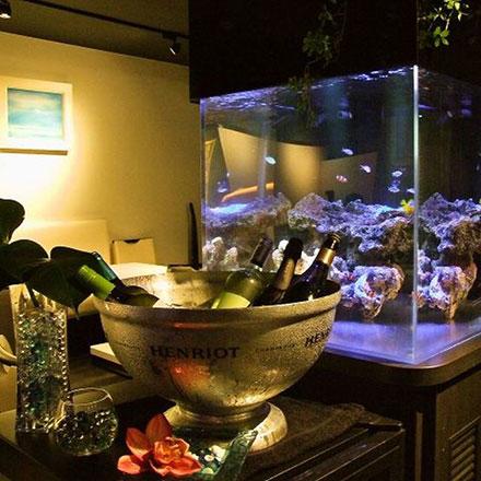 Dining Bar AQUARIUMダイニングバー アクアリウム