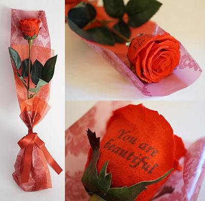 【花びらメッセージ】一輪ローズのプリザーブドフラワー
