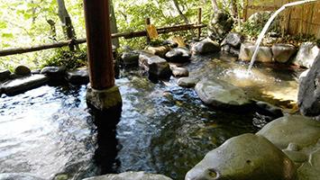 島崎藤村ゆかりの宿 中棚荘(小諸の温泉)