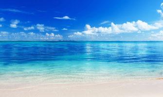 夏の海でサプライズをするイメージ