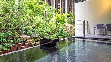 山のホテル(箱根・芦ノ湖温泉)