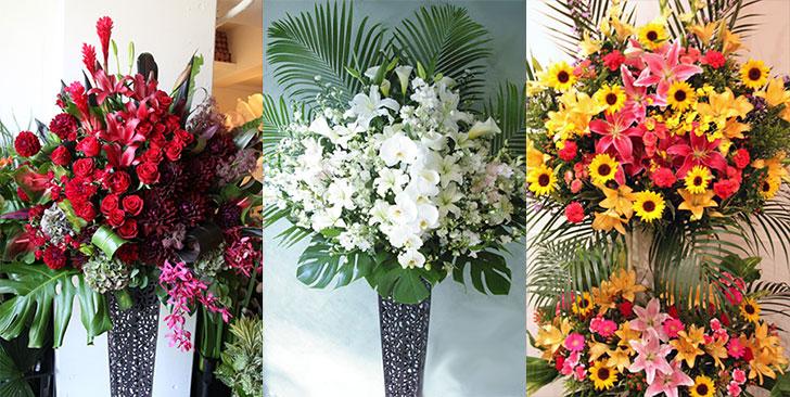 胡蝶蘭・高級スタンド花のプレミアガーデン