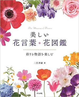 美しい花言葉・花図鑑‐彩りと物語を楽しむ