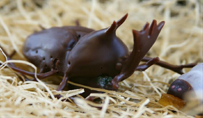 超リアル!かぶと虫の成虫チョコレート