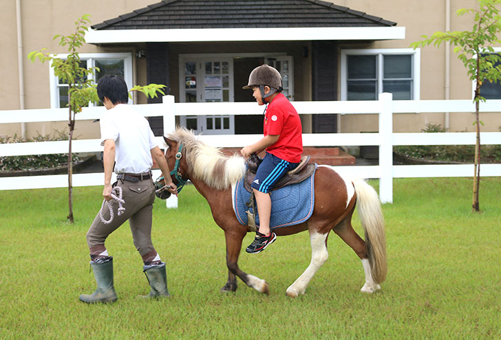 ブルーベリーヒル勝浦 乗馬 子供