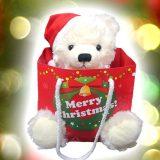 彼女のクリスマスプレゼントに人気!テディベア&シルバーネックレスのギフトセット
