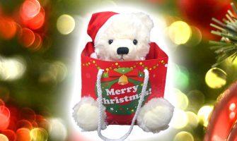 彼女のクリスマスプレゼントに人気!テディベア&ネックレスのギフトセット