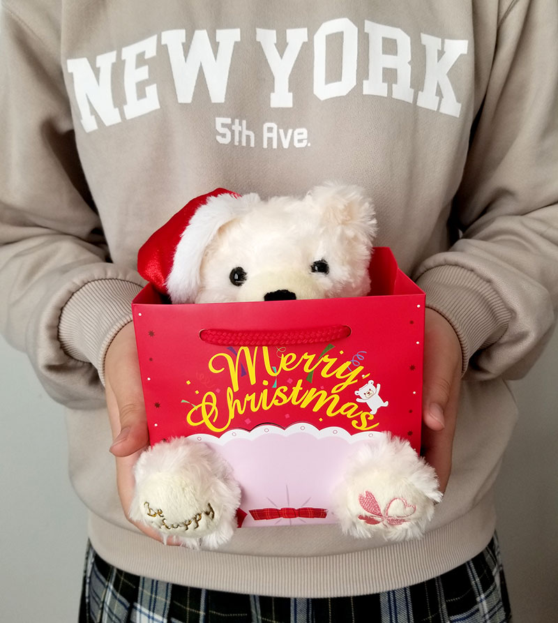 Jwell クリスマス限定 テディベア&シルバーネックレスのギフトセット