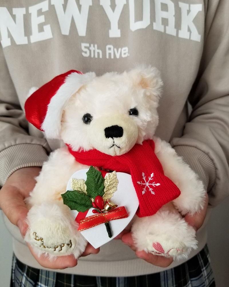 Jwell クリスマス限定 テディベア&シルバーネックレスのギフトセット 紙袋から取り出しイメージ
