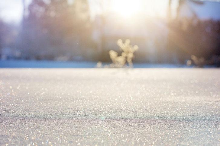 サプライズ6.〜純白ずくし。白銀の北海道で白バラプロポーズ〜クリスマスプロポーズ