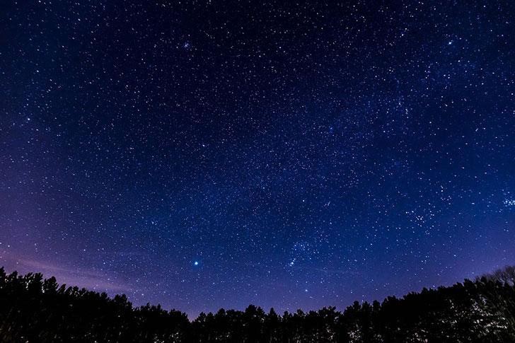 サプライズ8〜星空の下で見つける四つ葉のクローバー〜クリスマスプロポーズ