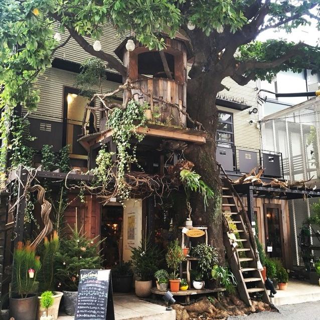 レ・グラン・ザルブル ツリーハウスのカフェ
