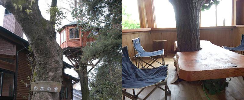珈琲自家焙煎店 たぶの木 ツリーハウスのカフェ