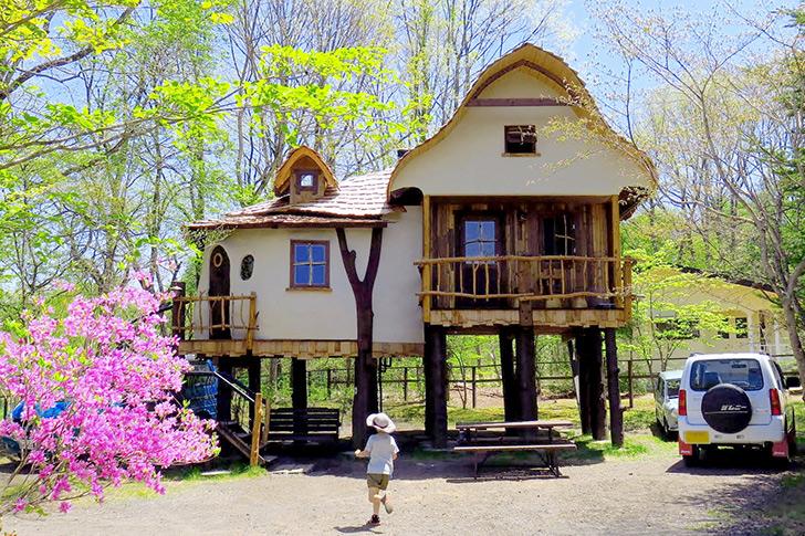 北軽井沢スウィートグラス 泊まれるツリーハウス
