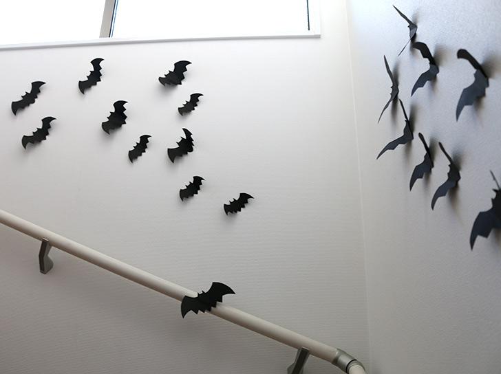 階段もコウモリがいっぱい