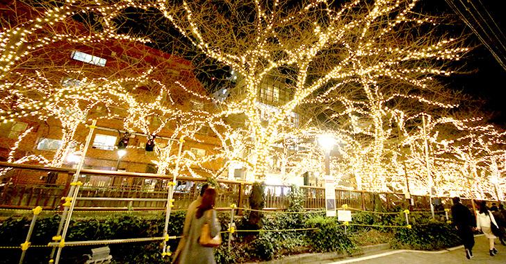 クリスマスイルミネーション 目黒川