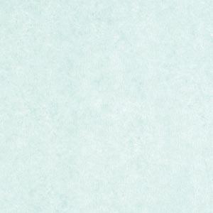 HEIKO IP薄葉紙 NON WAX クールミント