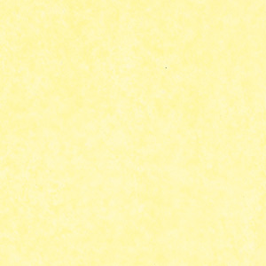 HEIKO IP薄葉紙 NON WAX イエロー