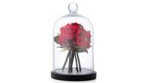 バラの花束プロポーズにおすすめ!枯れずにずっと飾れるフラワーブーケドーム
