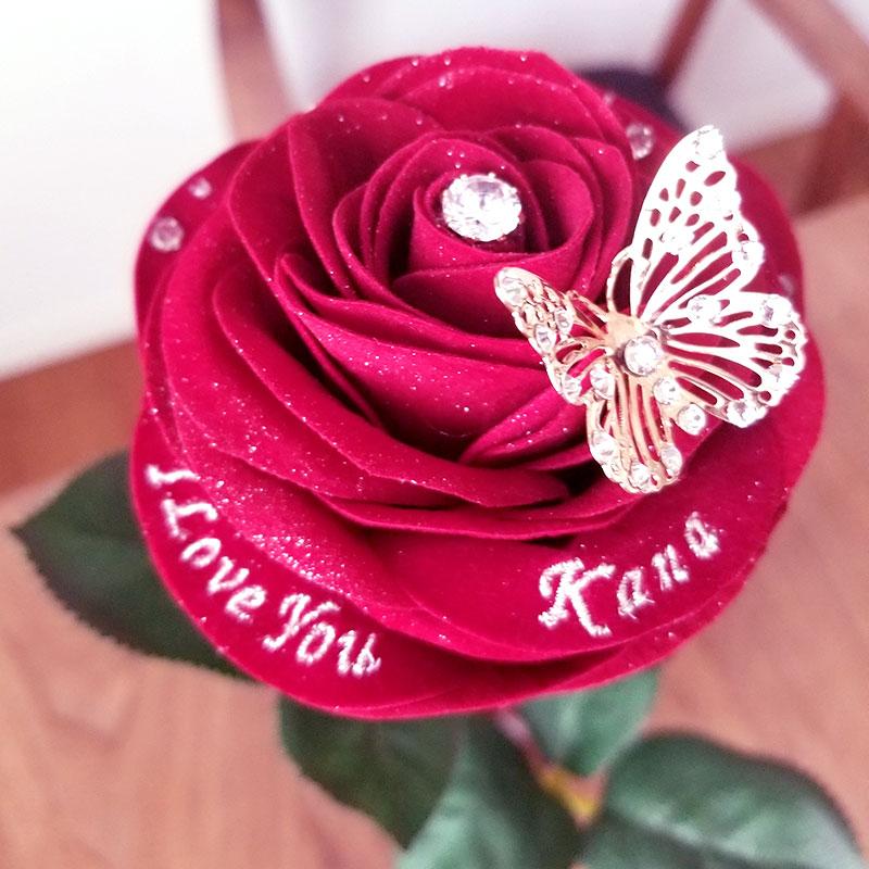 赤バラ1輪メッセージローズ 花にアップ