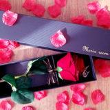 彼女のプレゼントに人気!赤バラ1輪メッセージローズの魅力を紹介!