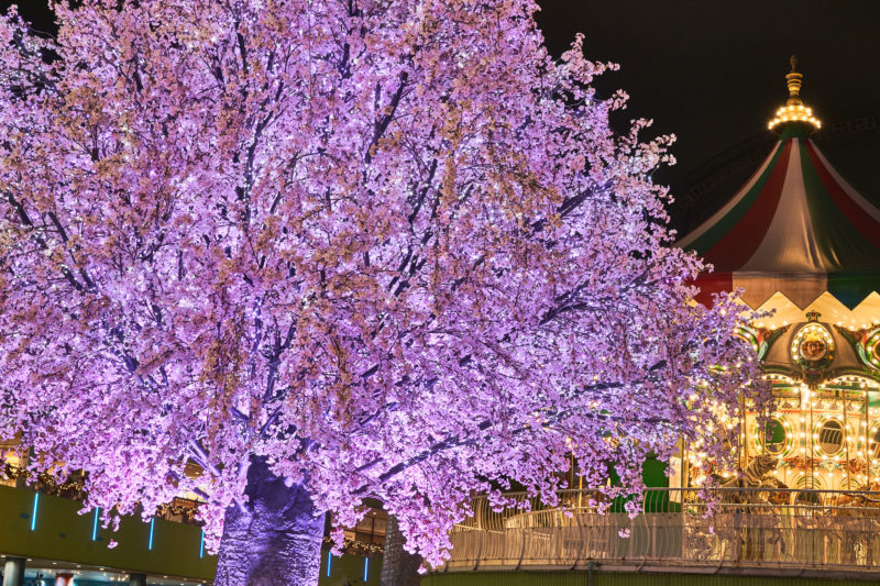 東京ドームシティークリスマス