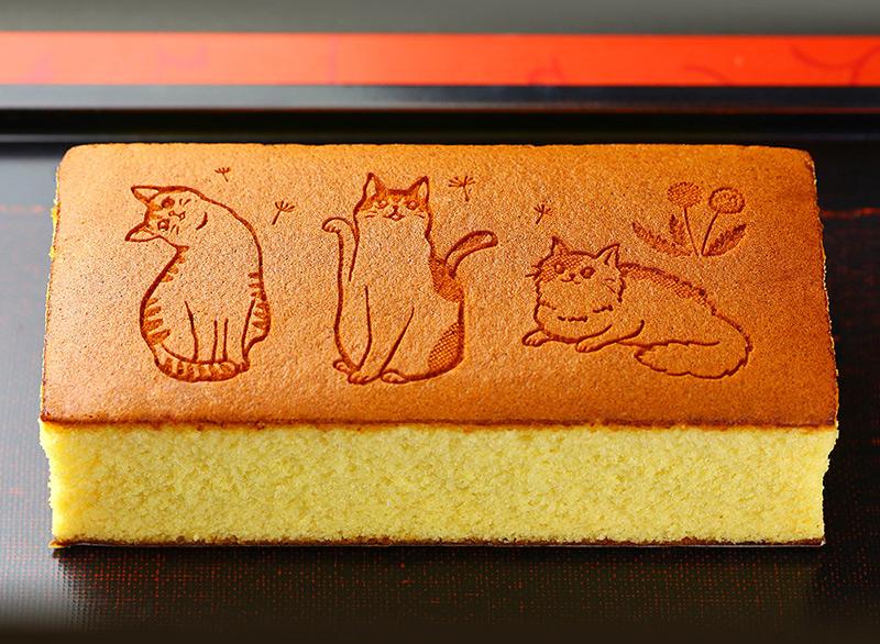 猫トリオが見せる表情にキュン♪「お祝い・贈り物に・ねこのカステラ」