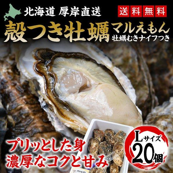 カキ 殻付き 生食用 牡蠣 Lサイズ 20個
