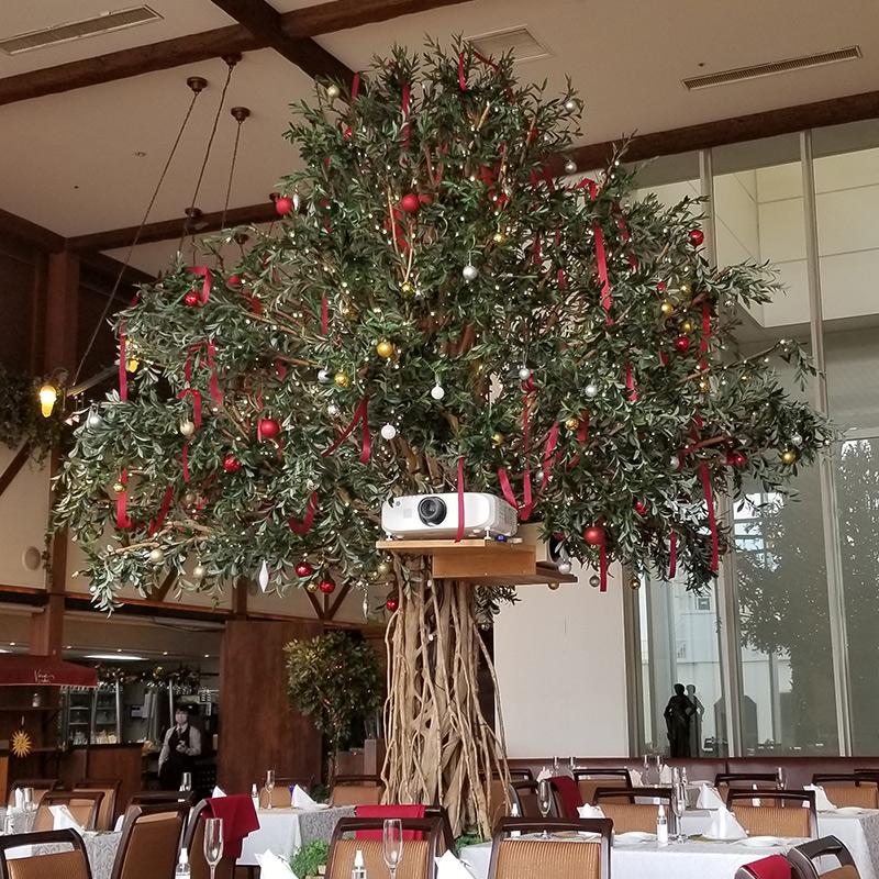 ベニーレベニーレのクリスマスランチ レビュー 店内 大きな木
