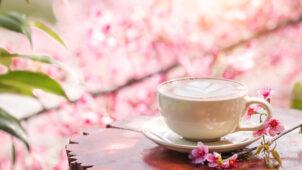 東京でお花見しながら食べられるカフェ&レストラン10選!