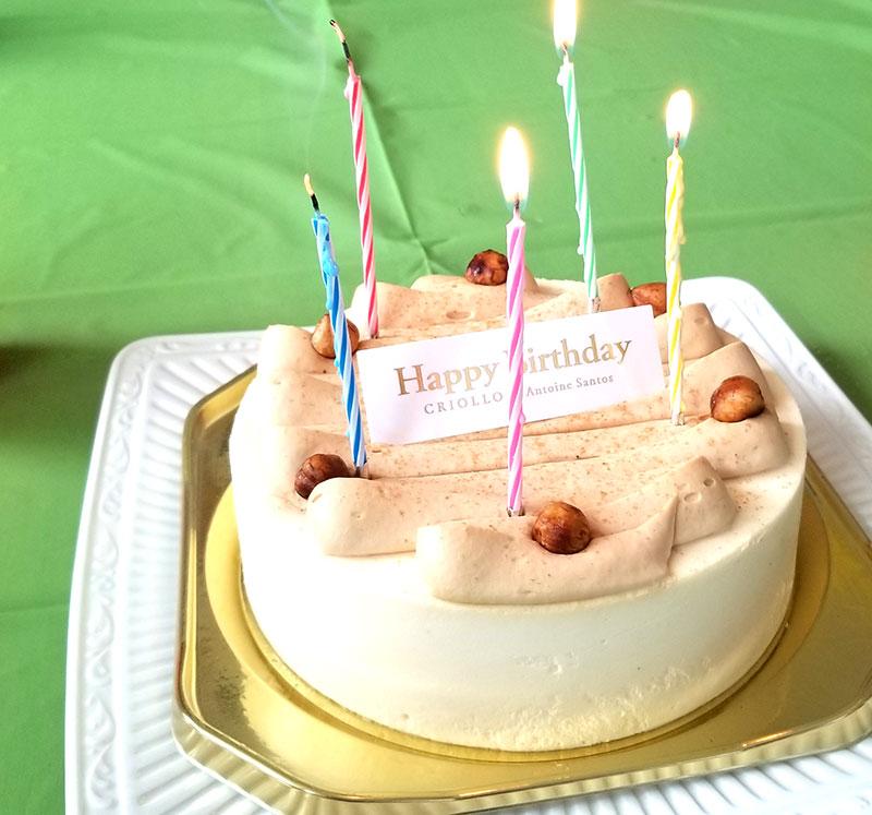 誕生日ケーキ フォートナイトをテーマにした小学生男子の誕生日の飾り付け