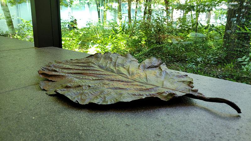 窓際に置かれた大きな枯葉のオブジェ アマン東京「ザ・カフェ by アマン」でアフタヌーンティー 感想・レビュー