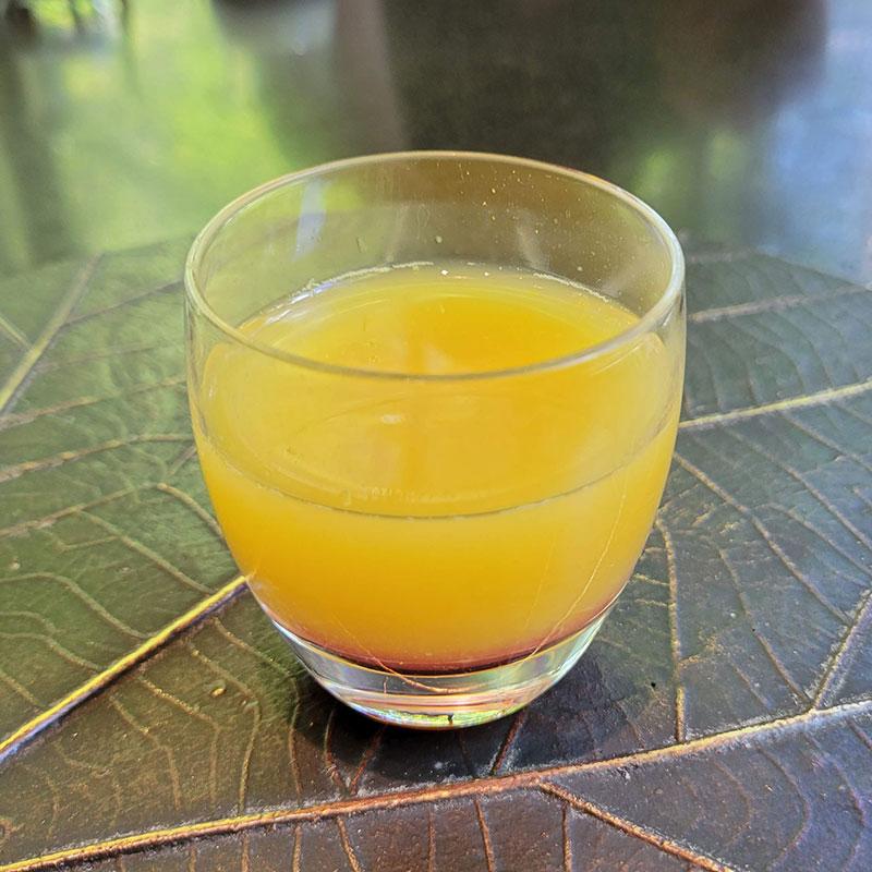 オレンジとベリーのスープ ハロウィンフォレデセール アマン東京「ザ・カフェ by アマン」でアフタヌーンティー 感想・レビュー